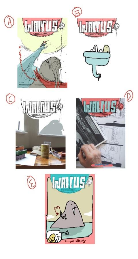 walrus ideas